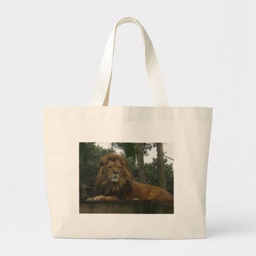 Leona majestuosa del león bolsas