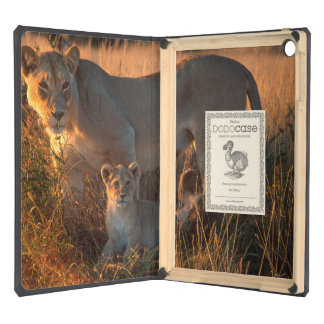 Leona (Panthera Leo) y Cub