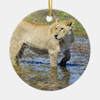 Leona que acecha a través del agua ornamento para arbol de navidad