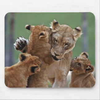 Leona y 3 Cubs Mousepad