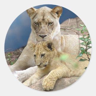 Leona y pegatina de Cub