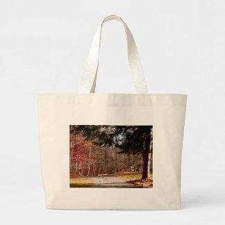 Leonard Harrison State Park Bag