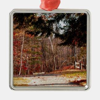 Leonard Harrison State Park Christmas Ornaments