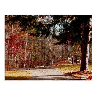 Leonard Harrison State Park Postcard