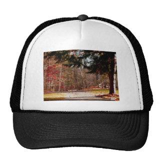 Leonard Harrison State Park Trucker Hat
