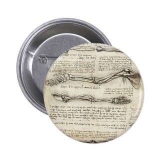 Leonardo da Vinci: Estudios del brazo por el bícep Pins