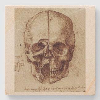 Leonardo Da Vinci Skull Study Coaster