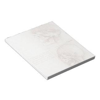 Leonardo da Vinci- Studies of human skull Note Pad