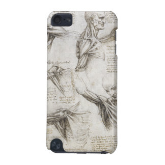 Leonardo Da Vinci - Study of Anatomy Paintings iPod Touch (5th Generation) Cases
