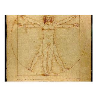 Leonardo Da Vinci Vitruvian Man Anatomy Postcard