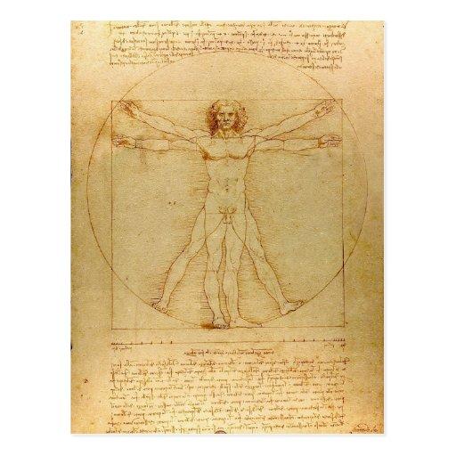 Leonardo Da Vinci Vitruvian Man Post Card