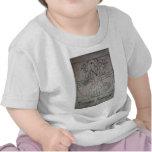Leonardo daCasso Shirts