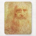 Leonardo Tapete De Raton