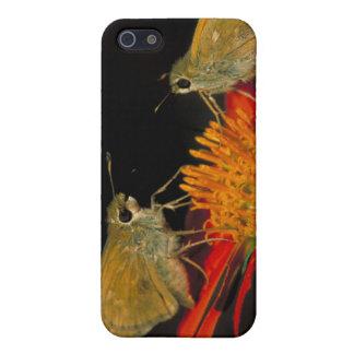 Leonard's skipper butterfly on Mexican sunflower iPhone SE/5/5s Case