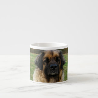 leonberger 2.png espresso cup