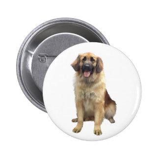 Leonberger (A) Button