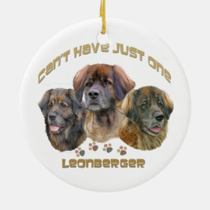 Leonberger Can't Have Just One Christmas Ornament