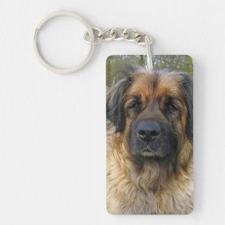 Leonberger dog beautiful photo portrait, gift keychain