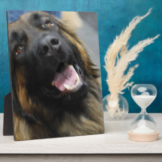 Leonberger Dog Breed Plaques