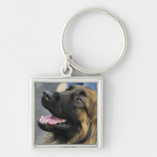 Leonberger Dog Keychain