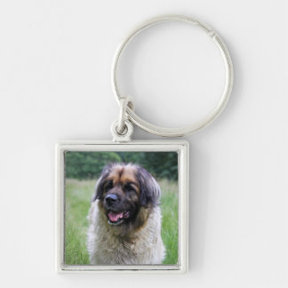 Leonberger dog keychain, keyring gift idea