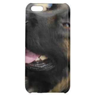 Leonberger iPhone 5C Case