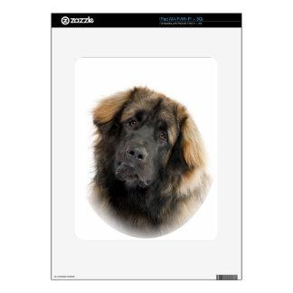 Leonberger Skins For iPad