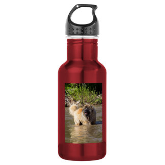 Leonberger Stainless Steel Water Bottle