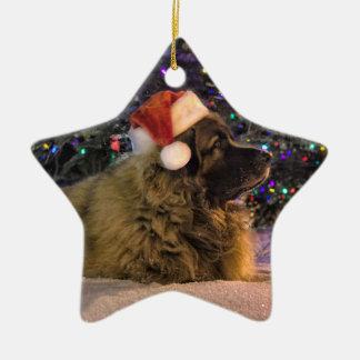 Leonberger Star Ornament