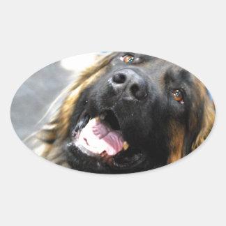 Leonberger  Stickers