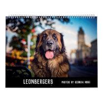 Leonbergers Calendar