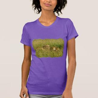 Leones africanos que descansan en hierba de la sab camisetas
