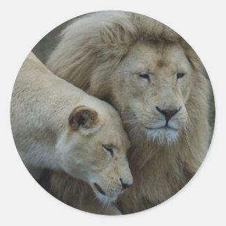 Leones blancos etiqueta redonda