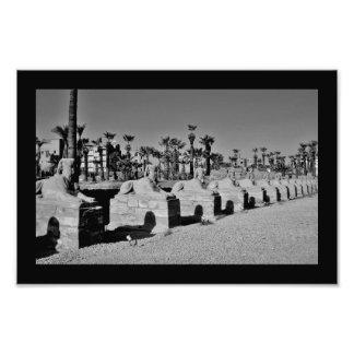Leones de Karnak Cojinete