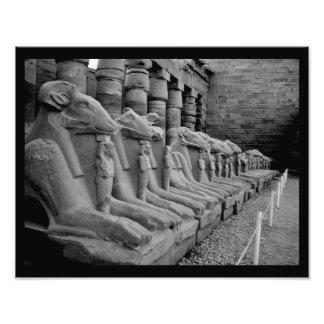 Leones del templo de Karnak Fotografía