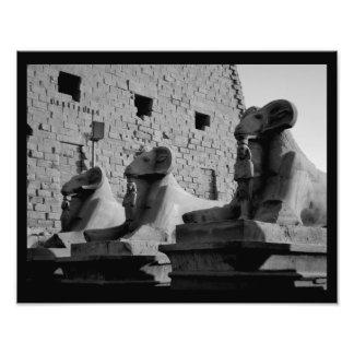 Leones del templo de Karnak Fotografías