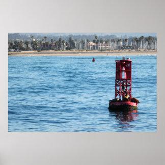 Leones marinos de la boya poster