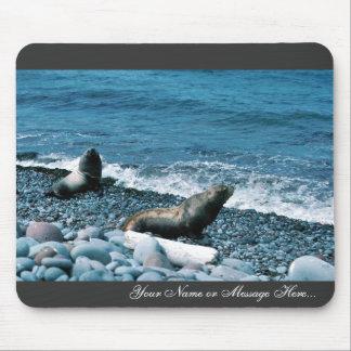Leones marinos de Steller Alfombrilla De Ratones