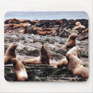 Leones marinos de Steller en Haulout Alfombrillas De Ratón