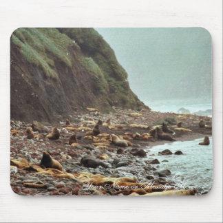 Leones marinos de Steller en Haulout Mouse Pad