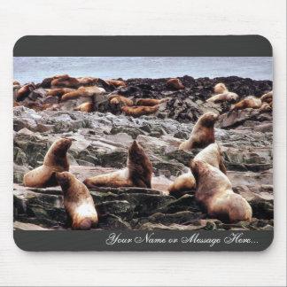 Leones marinos de Steller en Haulout Mouse Pads