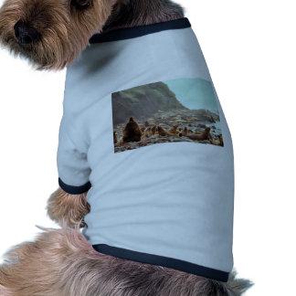 Leones marinos de Steller en Haulout Camisetas Mascota