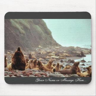 Leones marinos de Steller en Haulout Tapete De Ratones
