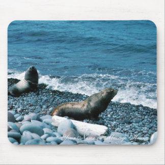 Leones marinos de Steller Mouse Pad