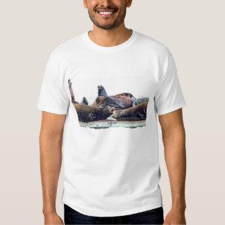 Leones marinos de Steller Playeras