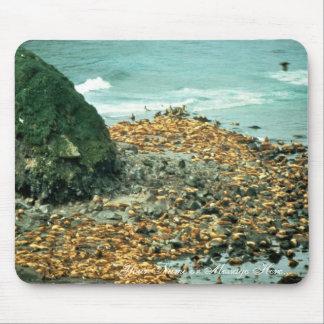 Leones marinos en Haulout Alfombrilla De Raton
