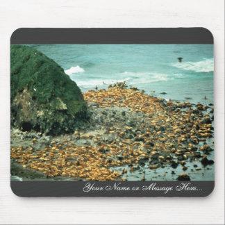 Leones marinos en Haulout Mousepads
