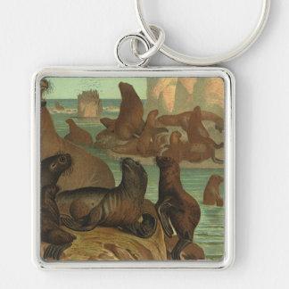 Leones marinos en la playa, animal del vintage de llavero cuadrado plateado