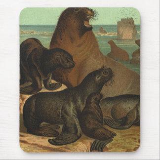 Leones marinos en la playa, animal del vintage de mousepads