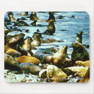 Leones marinos tapete de ratones